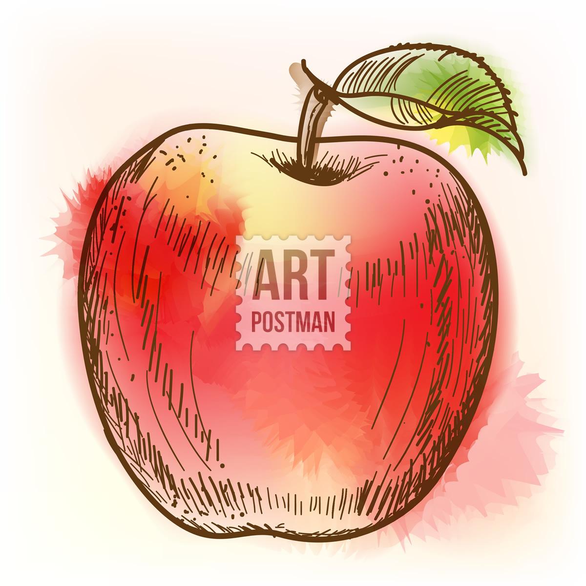 manzana acuarela style