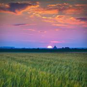 Campiña Sunset