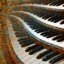 Organo de Iglesia - Arte Dinámico