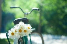 Flower Power Hippie